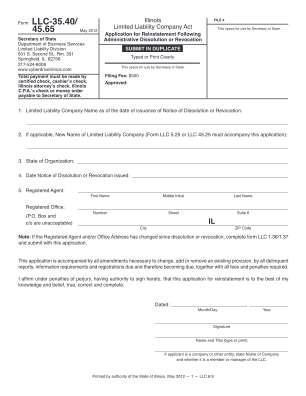 Llc 35404565 2010 Form