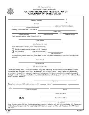 Ds4080 Form