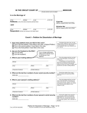 Petition For Dissolution Of Marriage Courts Mo